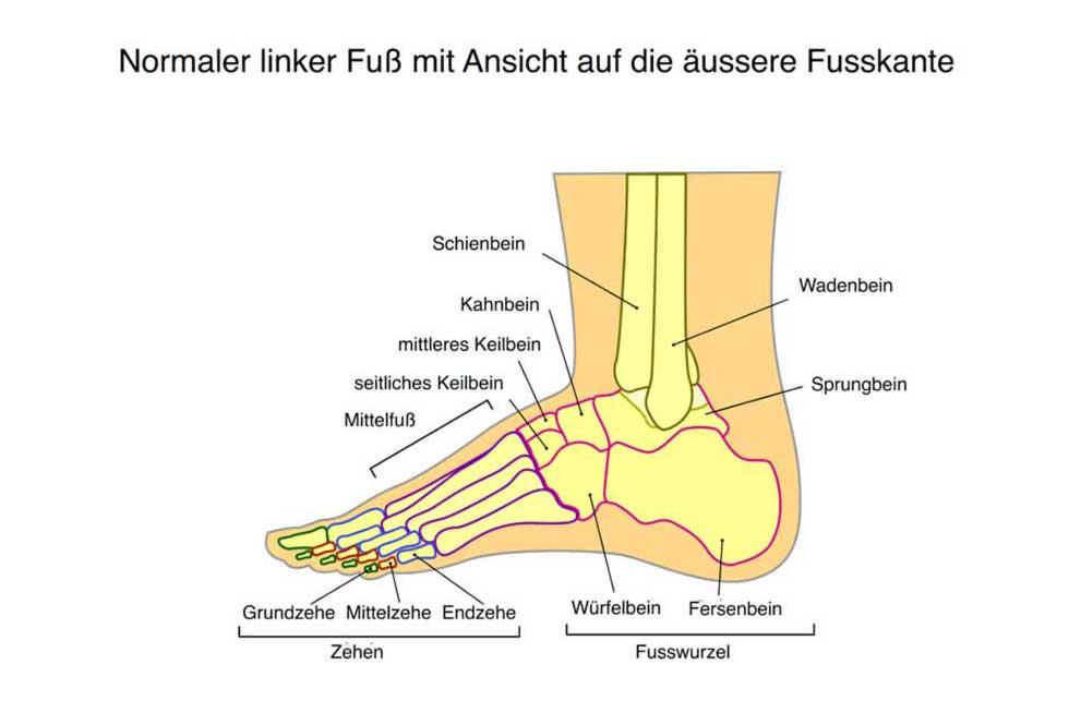 Fußfehlstellungen | Allgemein